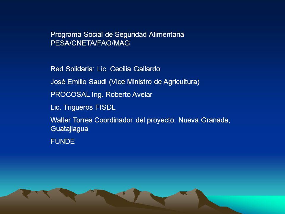 Programa Social de Seguridad Alimentaria PESA/CNETA/FAO/MAG