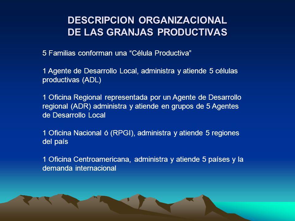 DESCRIPCION ORGANIZACIONAL DE LAS GRANJAS PRODUCTIVAS