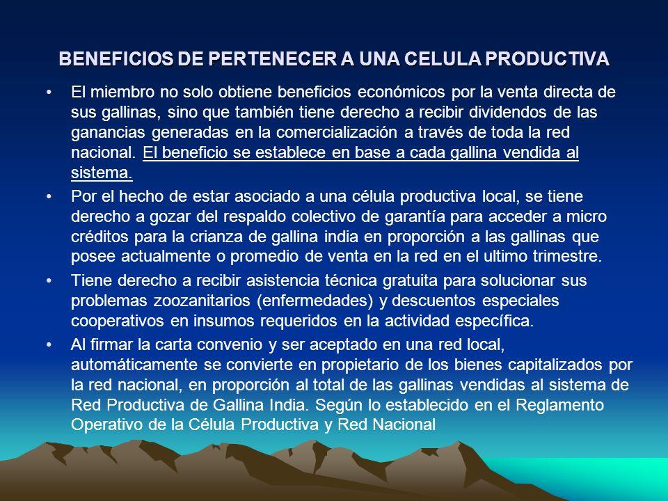 BENEFICIOS DE PERTENECER A UNA CELULA PRODUCTIVA