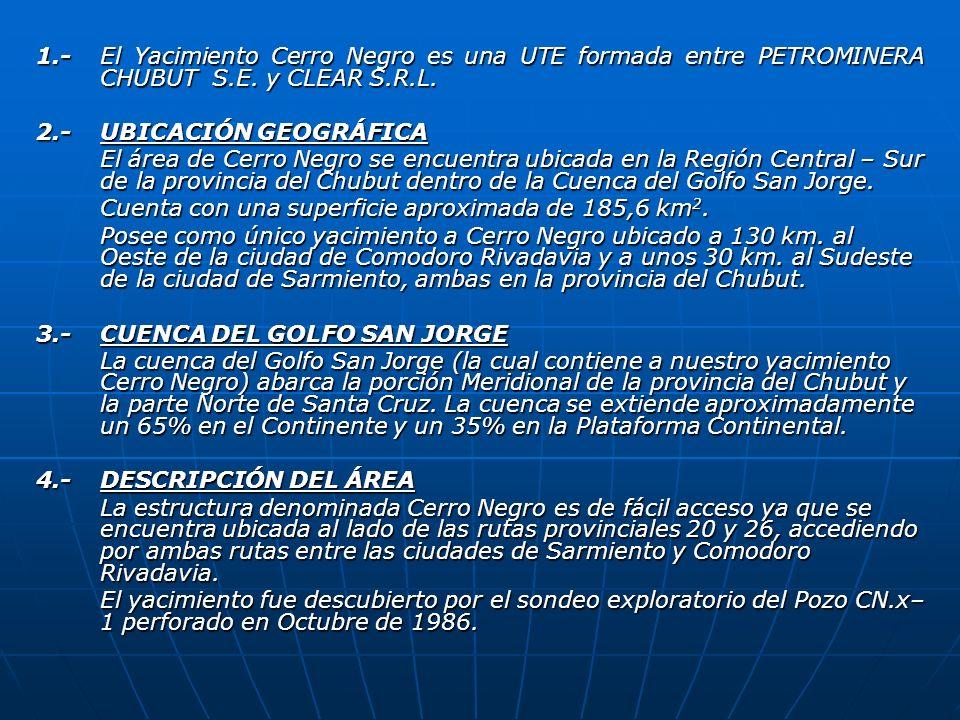 1.- El Yacimiento Cerro Negro es una UTE formada entre PETROMINERA CHUBUT S.E. y CLEAR S.R.L.
