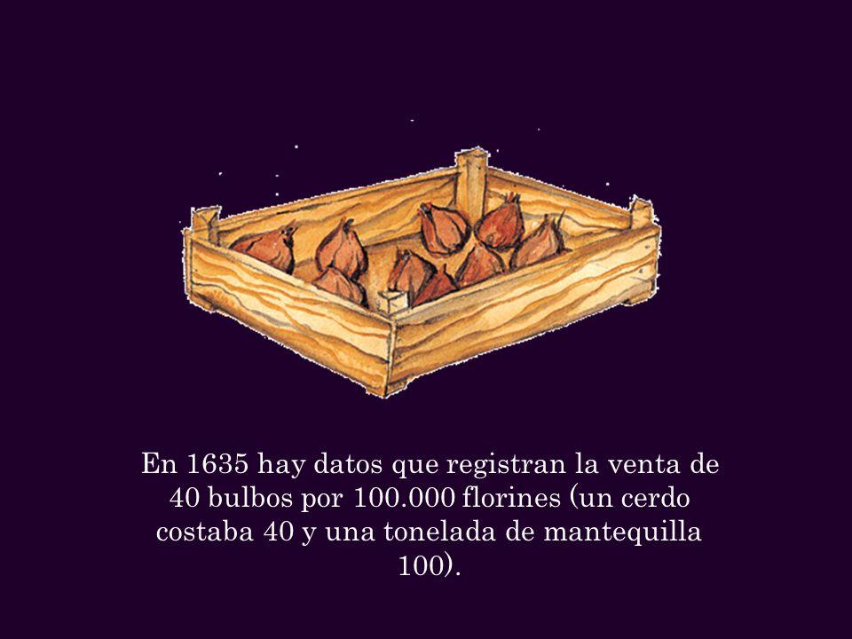 En 1635 hay datos que registran la venta de 40 bulbos por 100