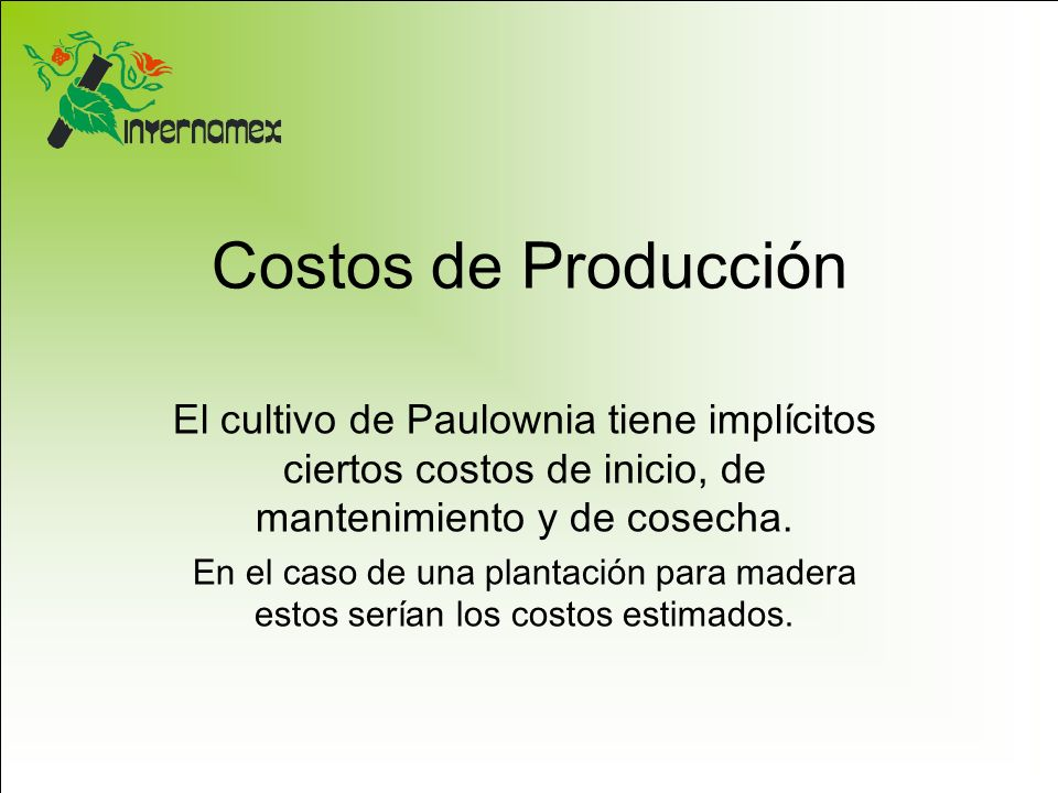 Costos de Producción El cultivo de Paulownia tiene implícitos ciertos costos de inicio, de mantenimiento y de cosecha.