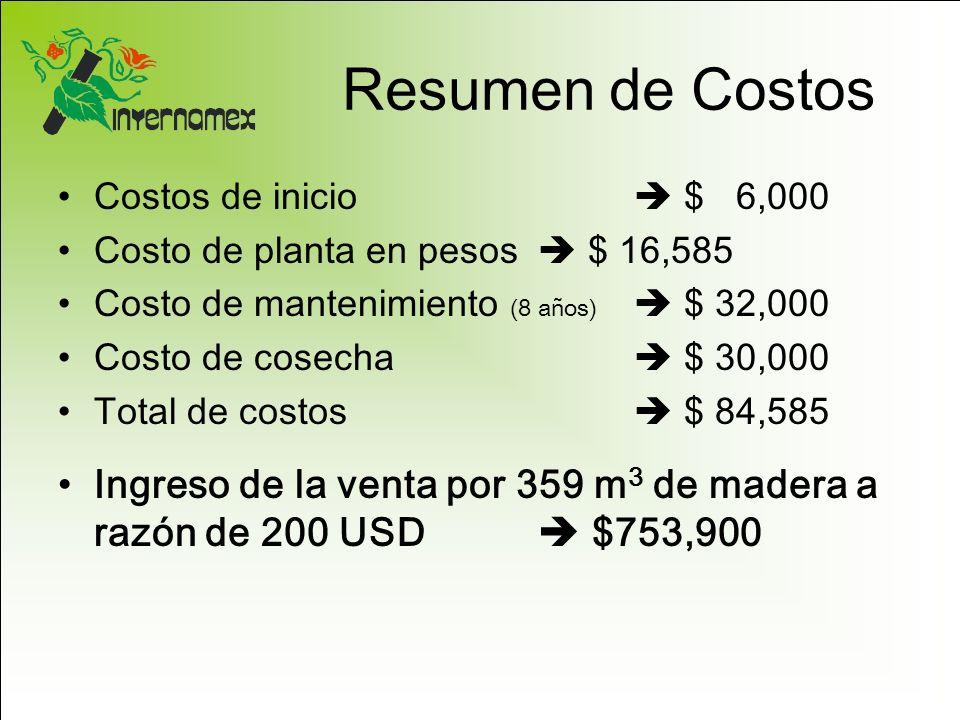 Resumen de Costos Costos de inicio  $ 6,000. Costo de planta en pesos  $ 16,585. Costo de mantenimiento (8 años)  $ 32,000.