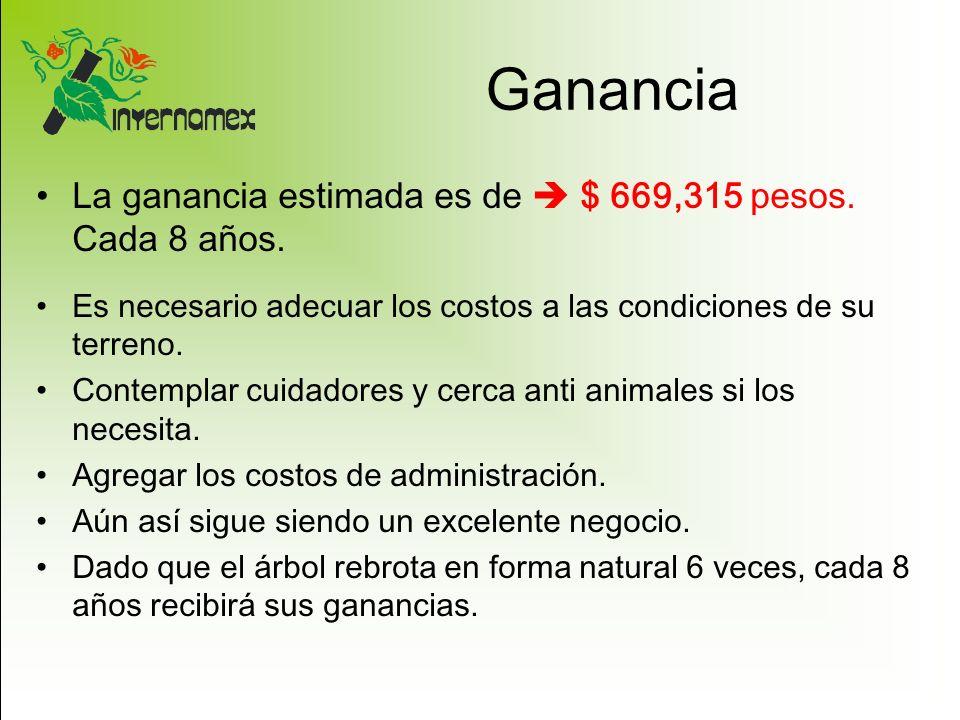 Ganancia La ganancia estimada es de  $ 669,315 pesos. Cada 8 años.
