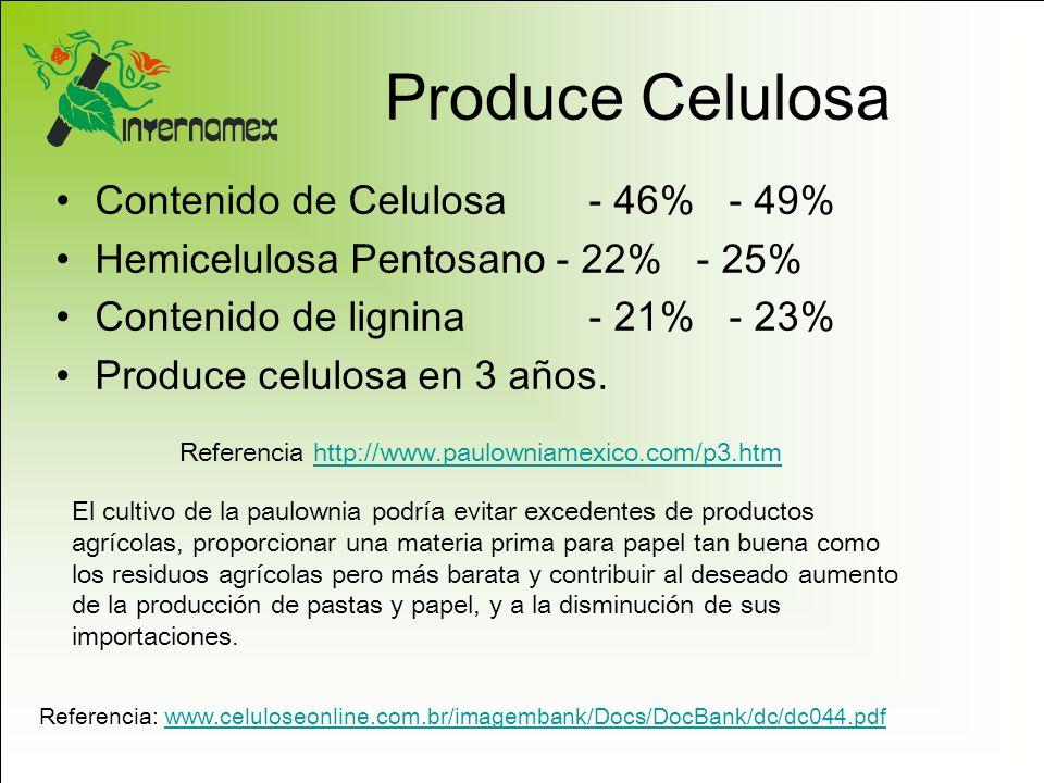 Produce Celulosa Contenido de Celulosa - 46% - 49%