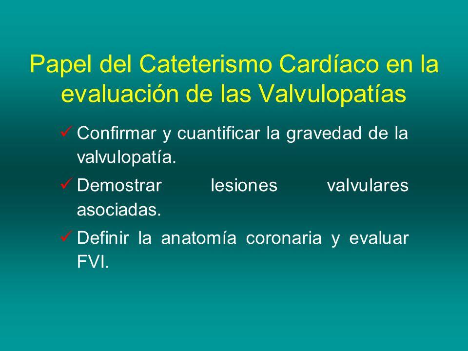 Excepcional Anatomía De Cateterismo Cardíaco Bosquejo - Imágenes de ...