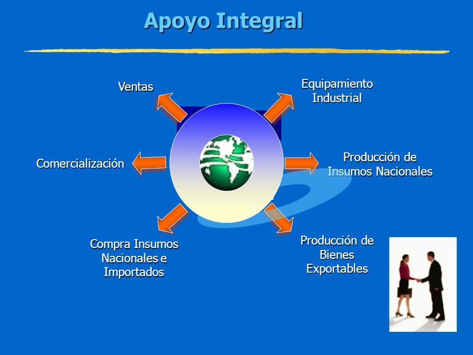 Apoyo Integral Ventas Equipamiento Industrial Cadena de Producción de