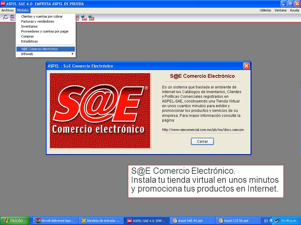 S@E Comercio Electrónico.