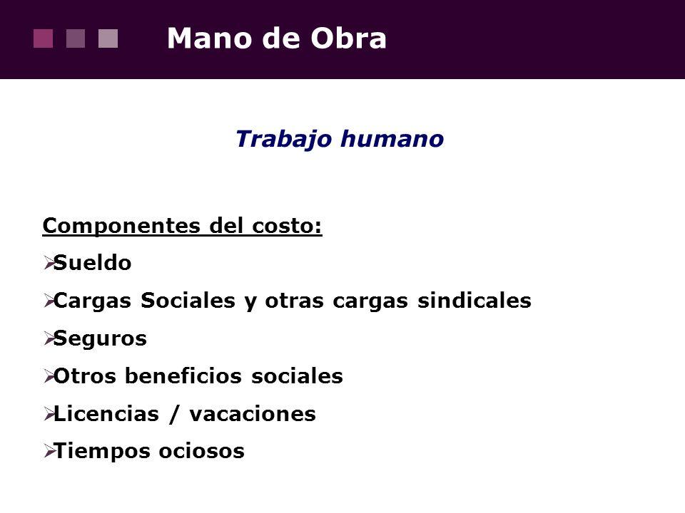 Mano de Obra Trabajo humano Componentes del costo: Sueldo
