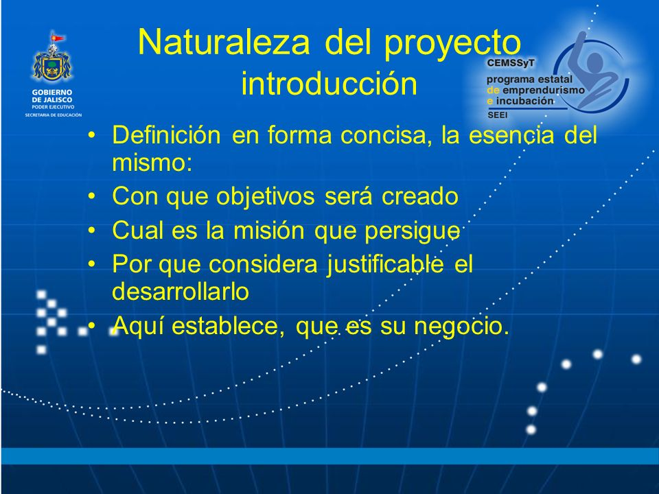Naturaleza del proyecto introducción