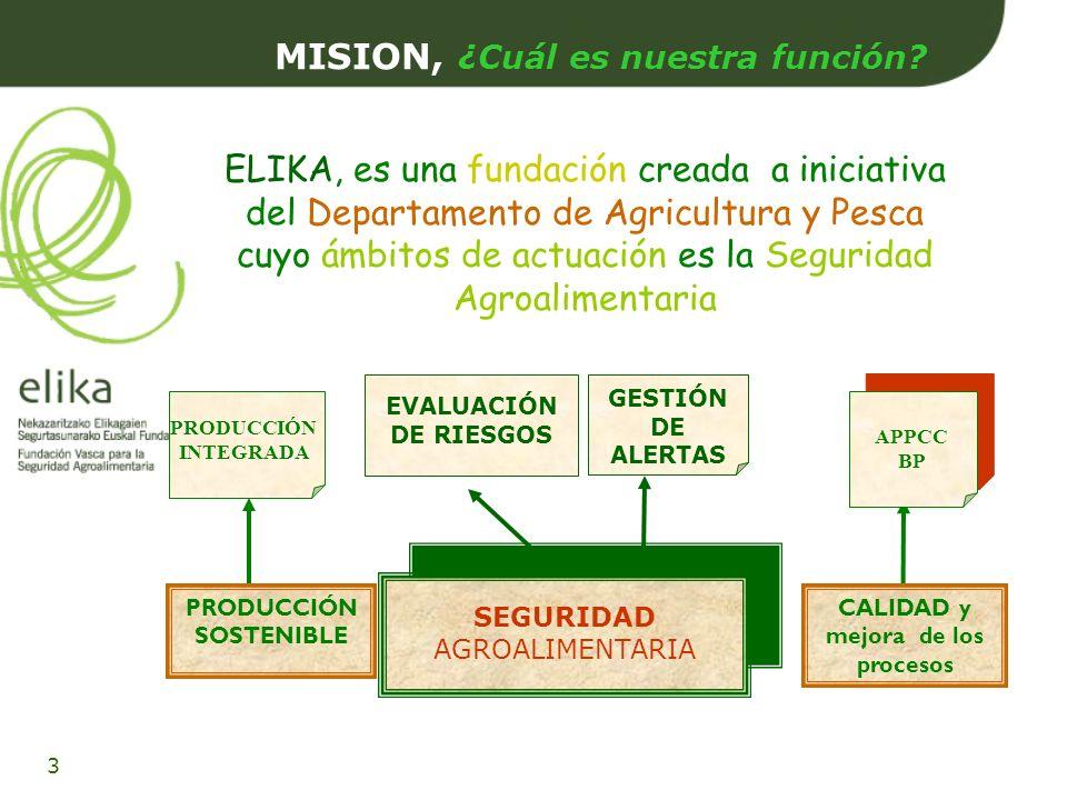 MISION, ¿Cuál es nuestra función