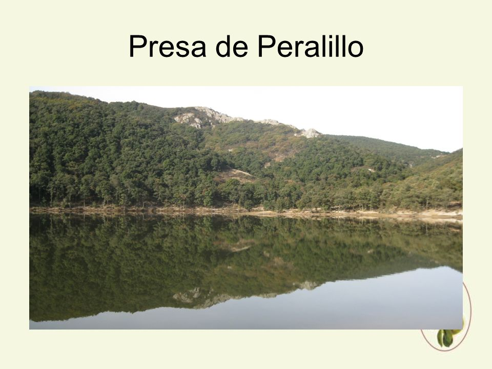 Presa de Peralillo