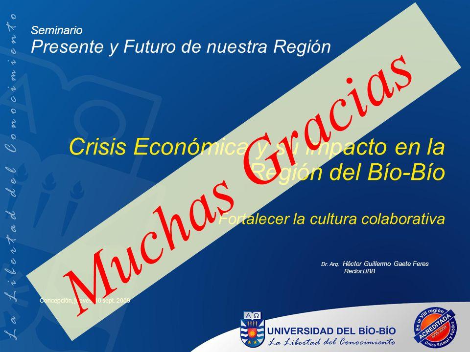 Muchas Gracias Crisis Económica y su impacto en la Región del Bío-Bío