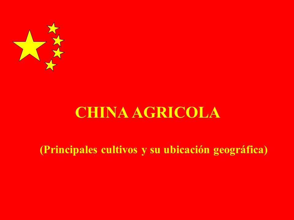 CHINA AGRICOLA (Principales cultivos y su ubicación geográfica)