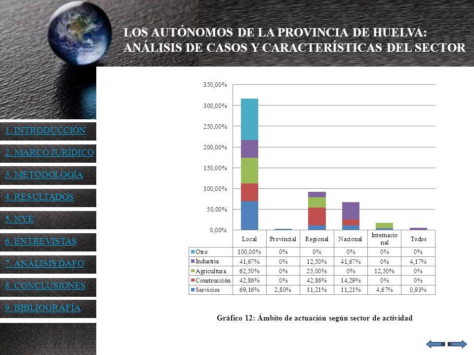 Gráfico 12: Ámbito de actuación según sector de actividad