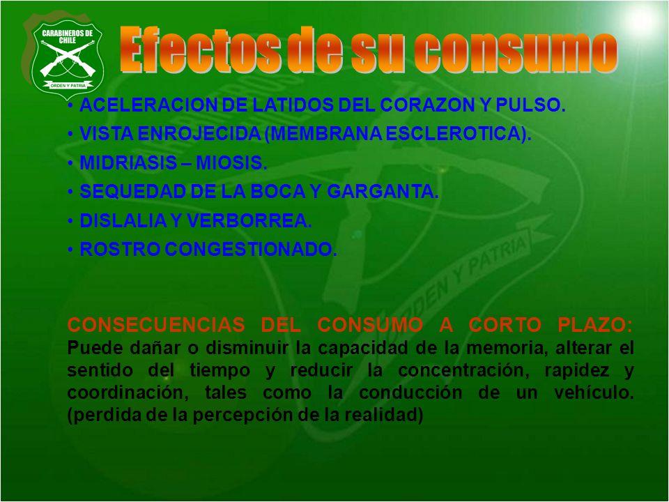 Efectos de su consumo ACELERACION DE LATIDOS DEL CORAZON Y PULSO. VISTA ENROJECIDA (MEMBRANA ESCLEROTICA).