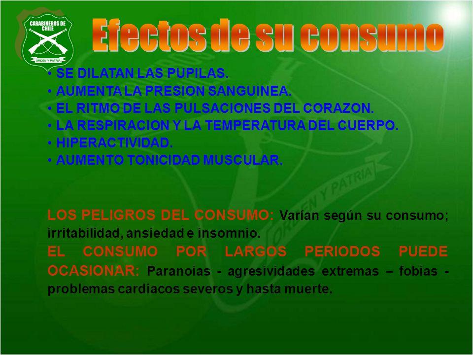 Efectos de su consumo SE DILATAN LAS PUPILAS. AUMENTA LA PRESION SANGUINEA. EL RITMO DE LAS PULSACIONES DEL CORAZON.