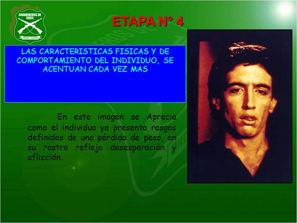 ETAPA N° 4 LAS CARACTERISTICAS FISICAS Y DE COMPORTAMIENTO DEL INDIVIDUO, SE ACENTUAN CADA VEZ MAS.