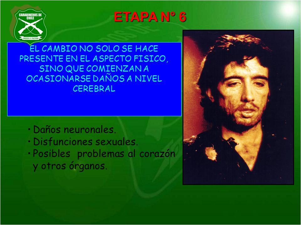 ETAPA N° 6 Daños neuronales. Disfunciones sexuales.