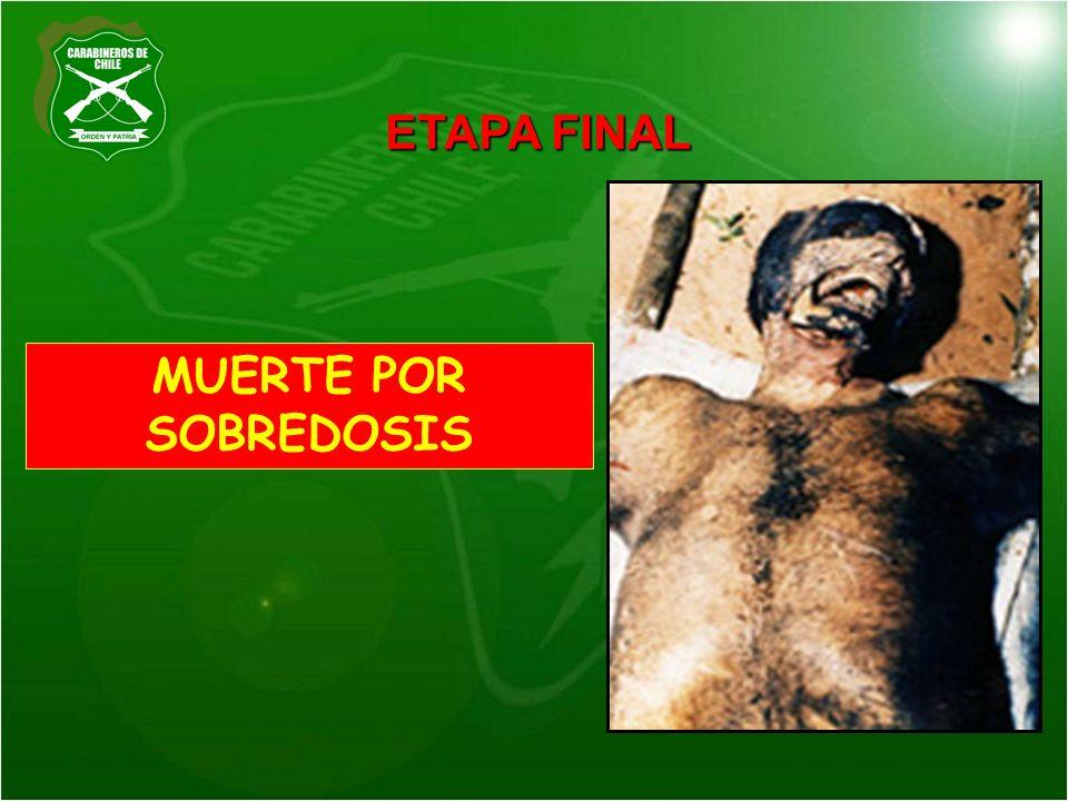 ETAPA FINAL MUERTE POR SOBREDOSIS