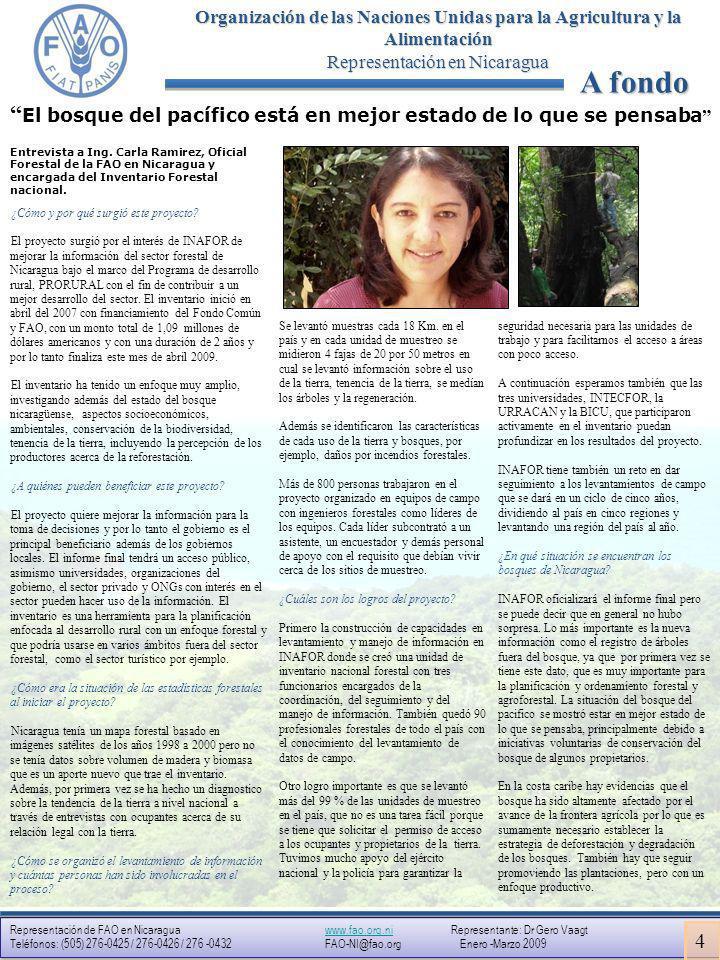 Representación en Nicaragua