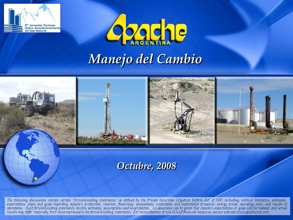 Manejo del Cambio Octubre, 2008
