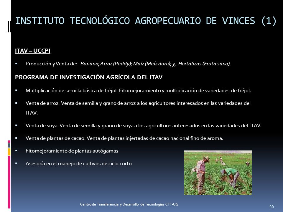 INSTITUTO TECNOLÓGICO AGROPECUARIO DE VINCES (1)