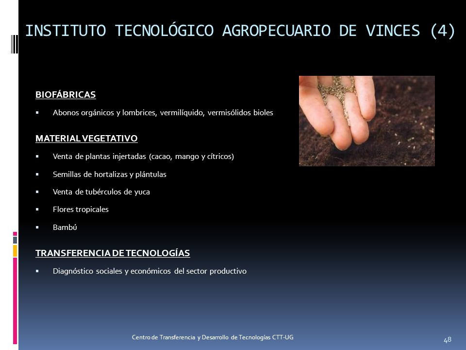 INSTITUTO TECNOLÓGICO AGROPECUARIO DE VINCES (4)