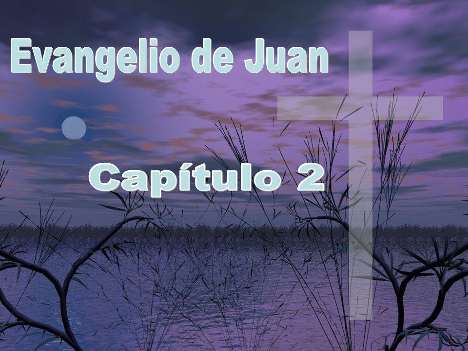Evangelio de Juan Capítulo 2