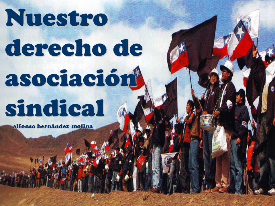 derecho de asociación sindical