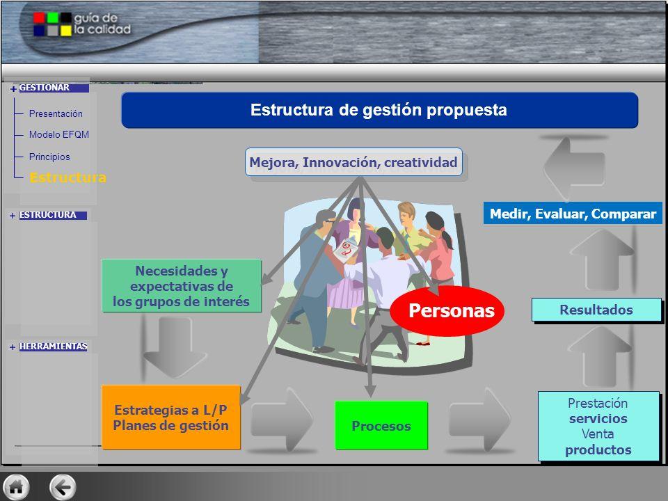 Personas Estructura de gestión propuesta