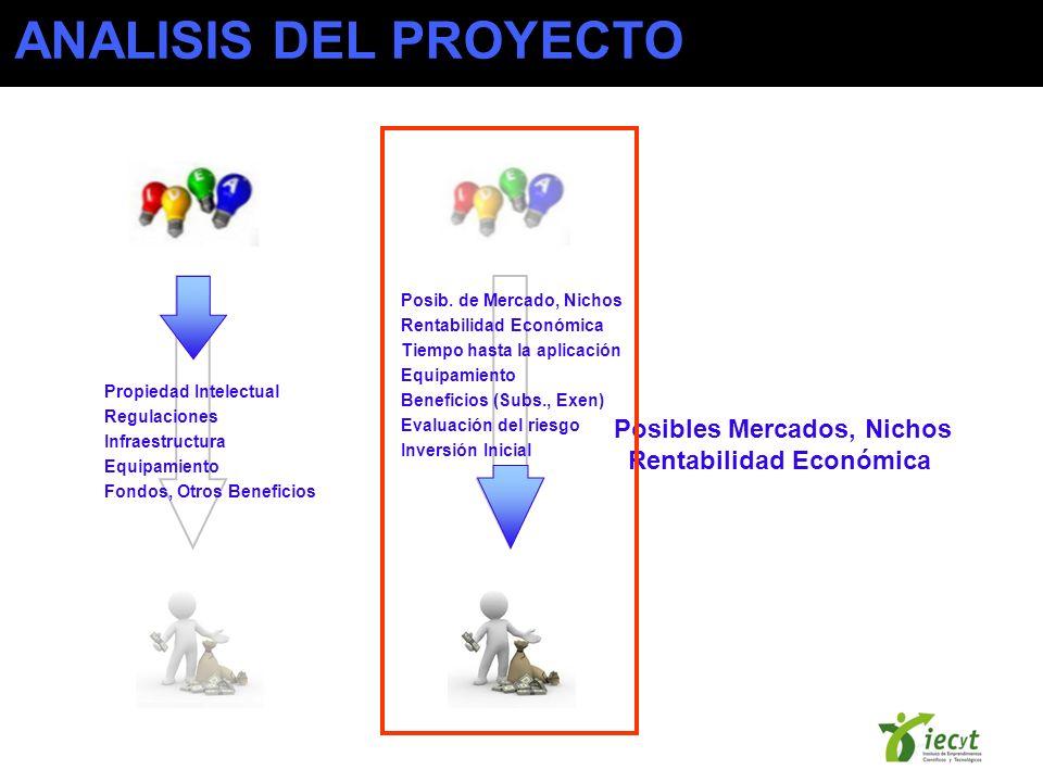ANALISIS DEL PROYECTO Posibles Mercados, Nichos Rentabilidad Económica