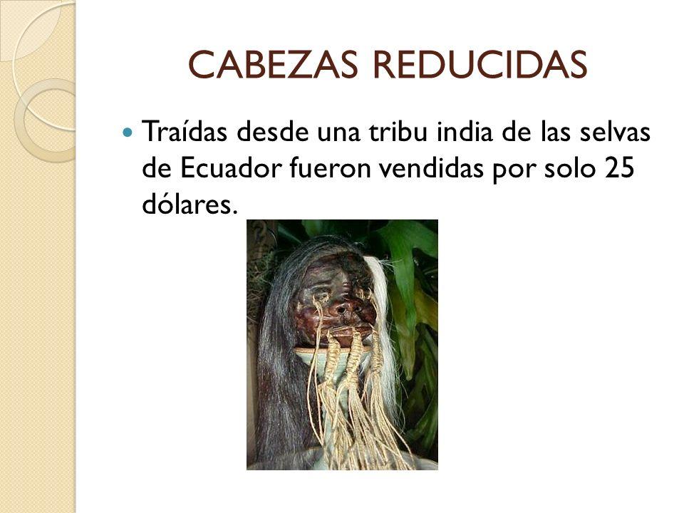 CABEZAS REDUCIDAS Traídas desde una tribu india de las selvas de Ecuador fueron vendidas por solo 25 dólares.