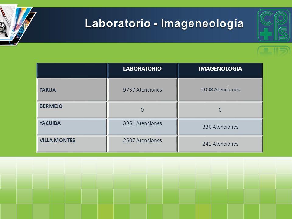 Laboratorio - Imageneología