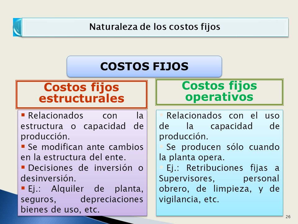 Naturaleza de los costos fijos