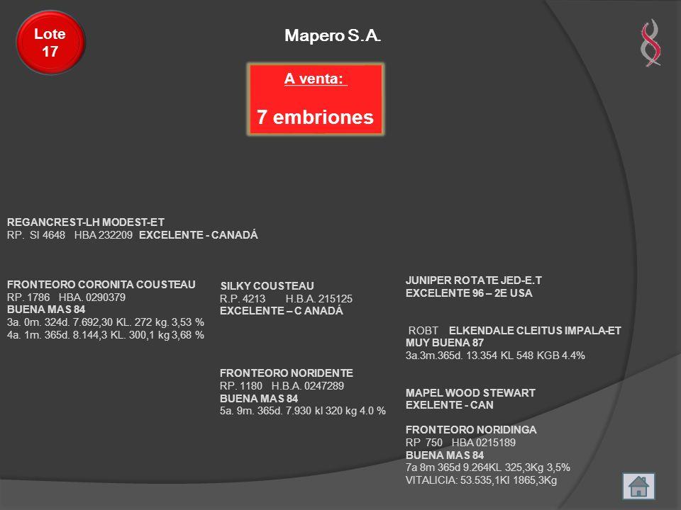 7 embriones Mapero S.A. Lote 17 A venta: REGANCREST-LH MODEST-ET
