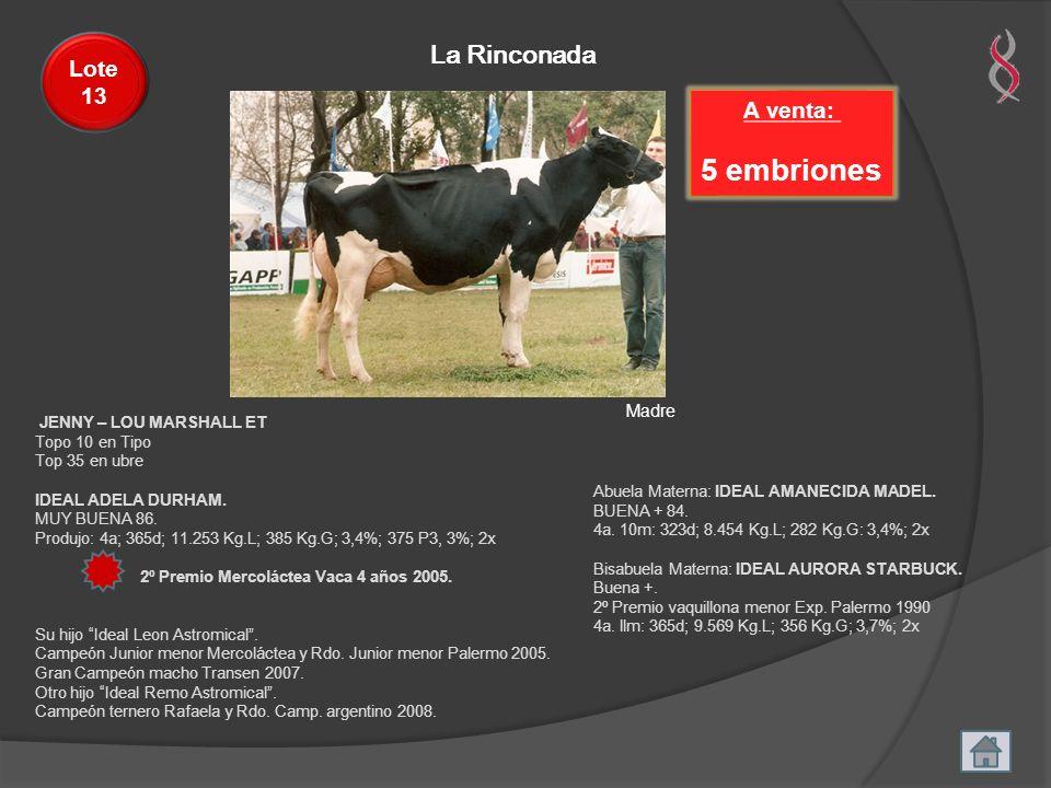 5 embriones La Rinconada Lote 13 A venta: Madre