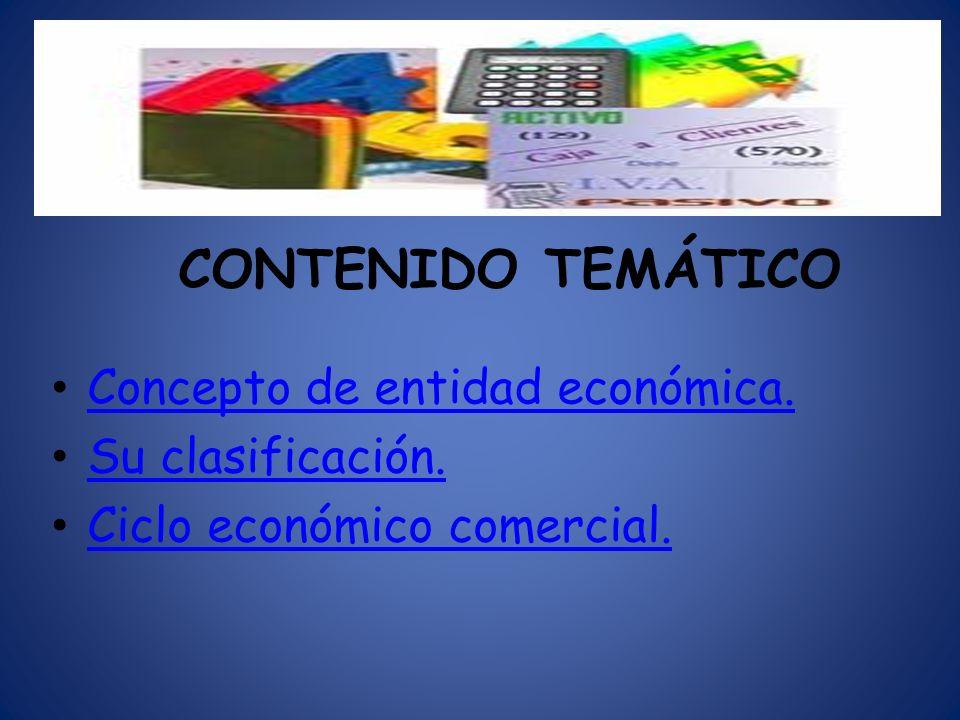 Concepto de entidad económica. Su clasificación.