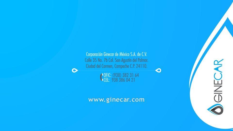 www.ginecar.com
