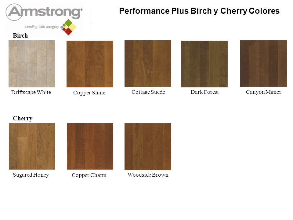 Performance Plus Walnut Colores