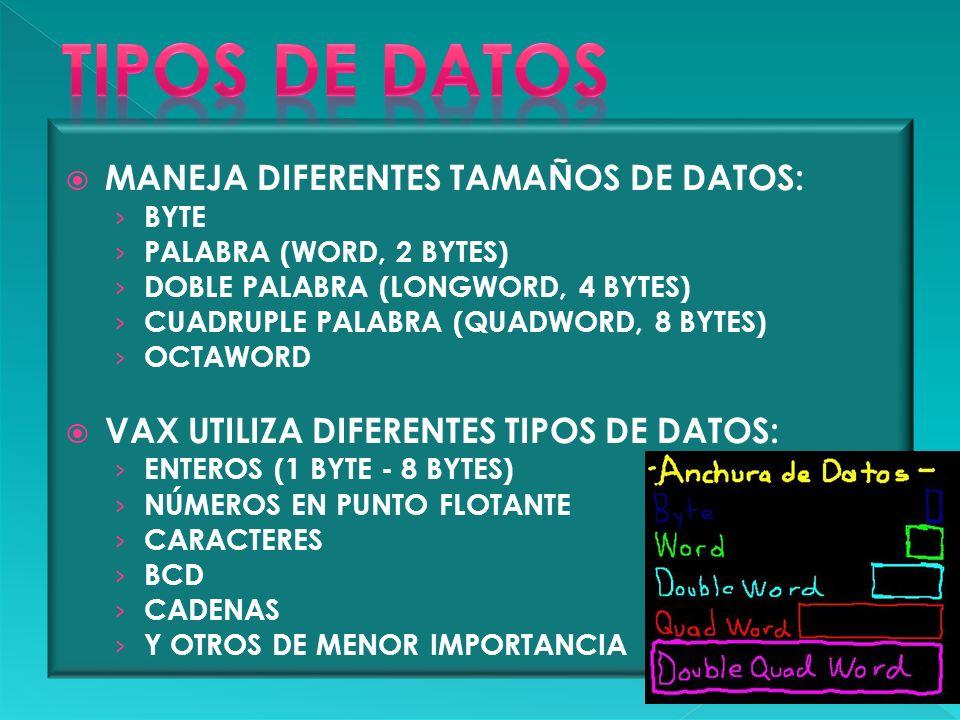 TIPOS DE DATOS MANEJA DIFERENTES TAMAÑOS DE DATOS: