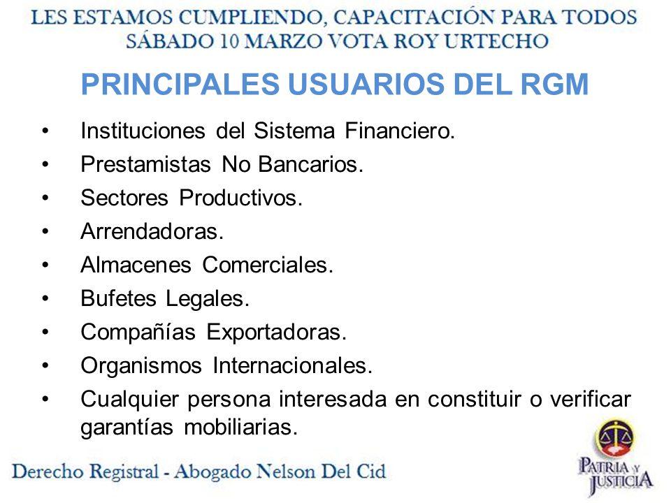 PRINCIPALES USUARIOS DEL RGM