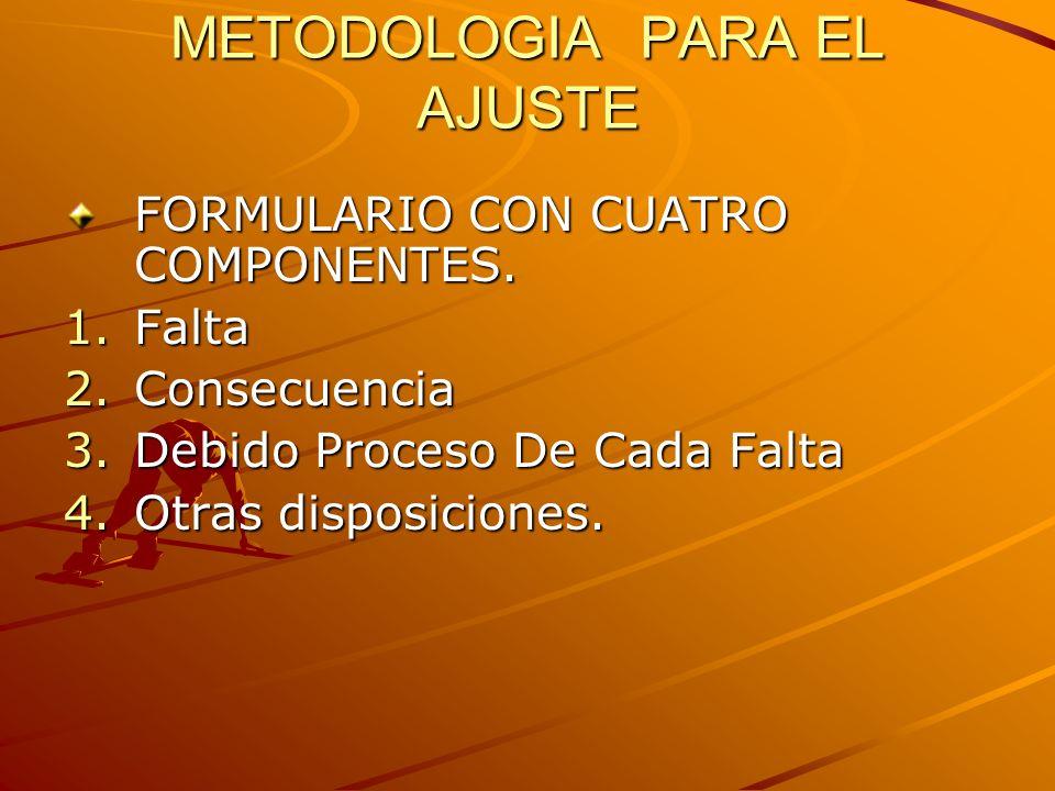 METODOLOGIA PARA EL AJUSTE