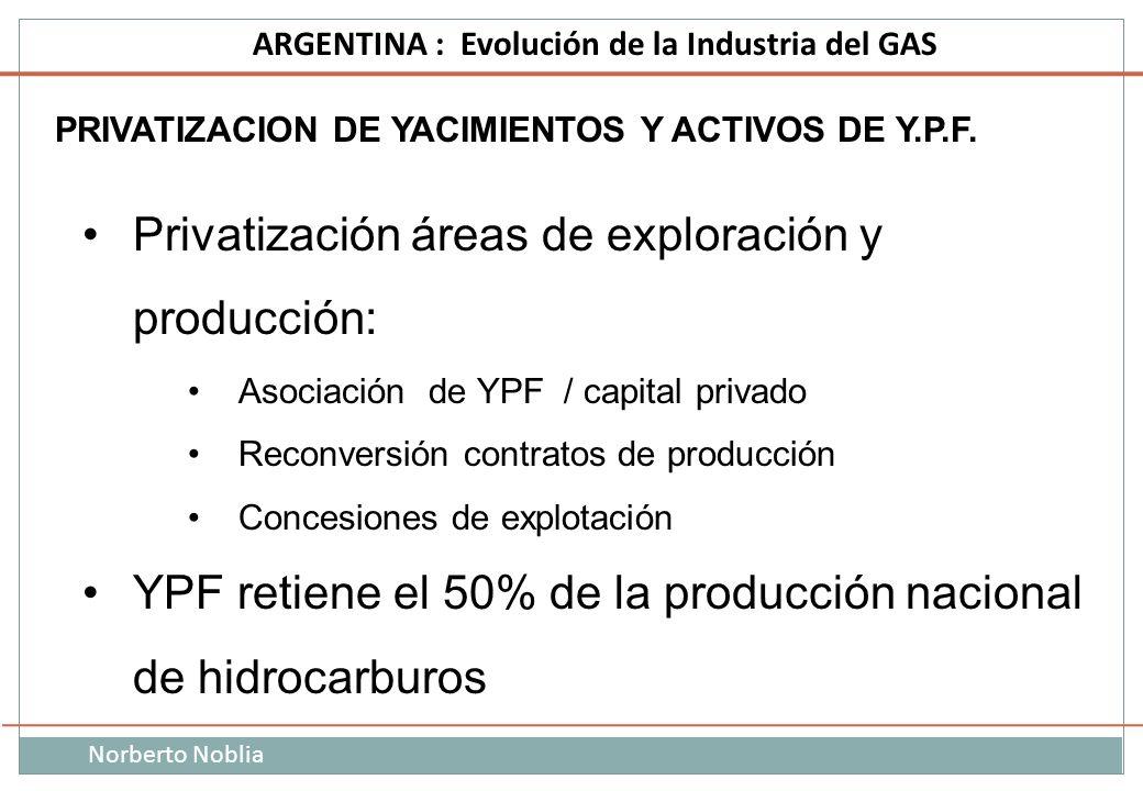 Privatización áreas de exploración y producción: