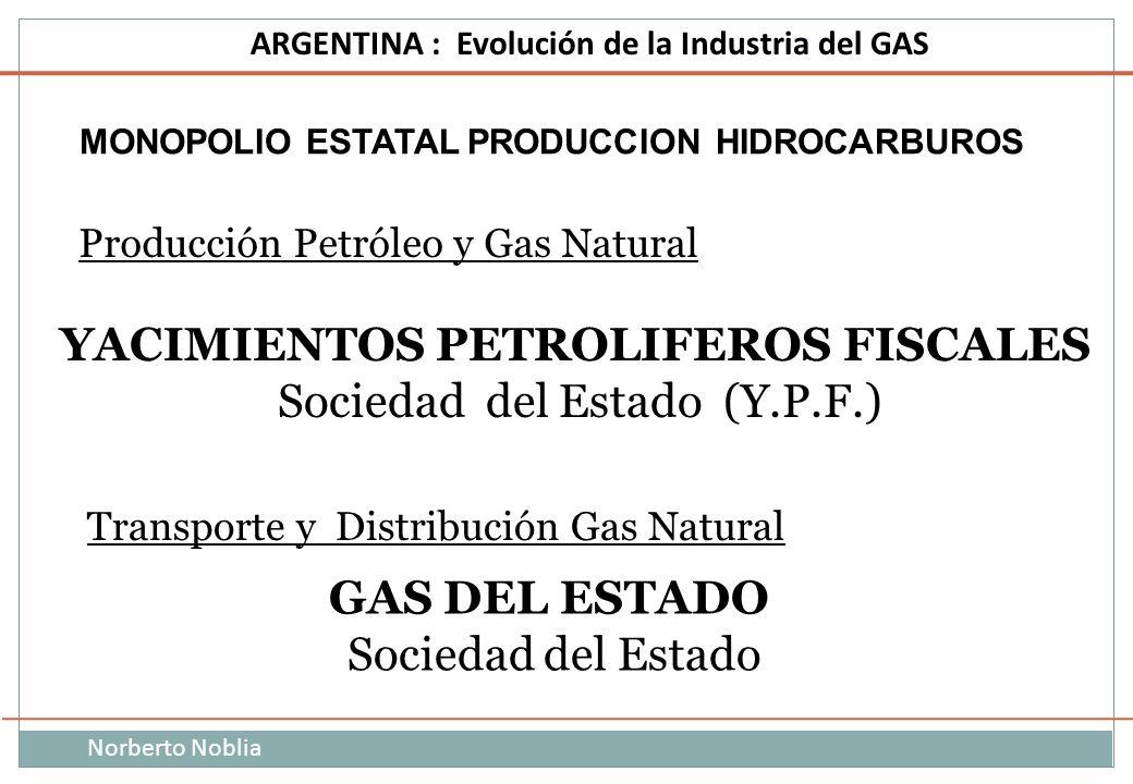 YACIMIENTOS PETROLIFEROS FISCALES GAS DEL ESTADO