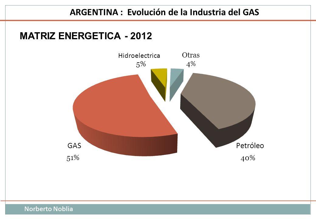 MATRIZ ENERGETICA - 2012
