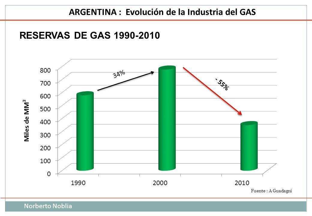 RESERVAS DE GAS 1990-2010 34% Miles de MM3 Fuente : A Guadagni