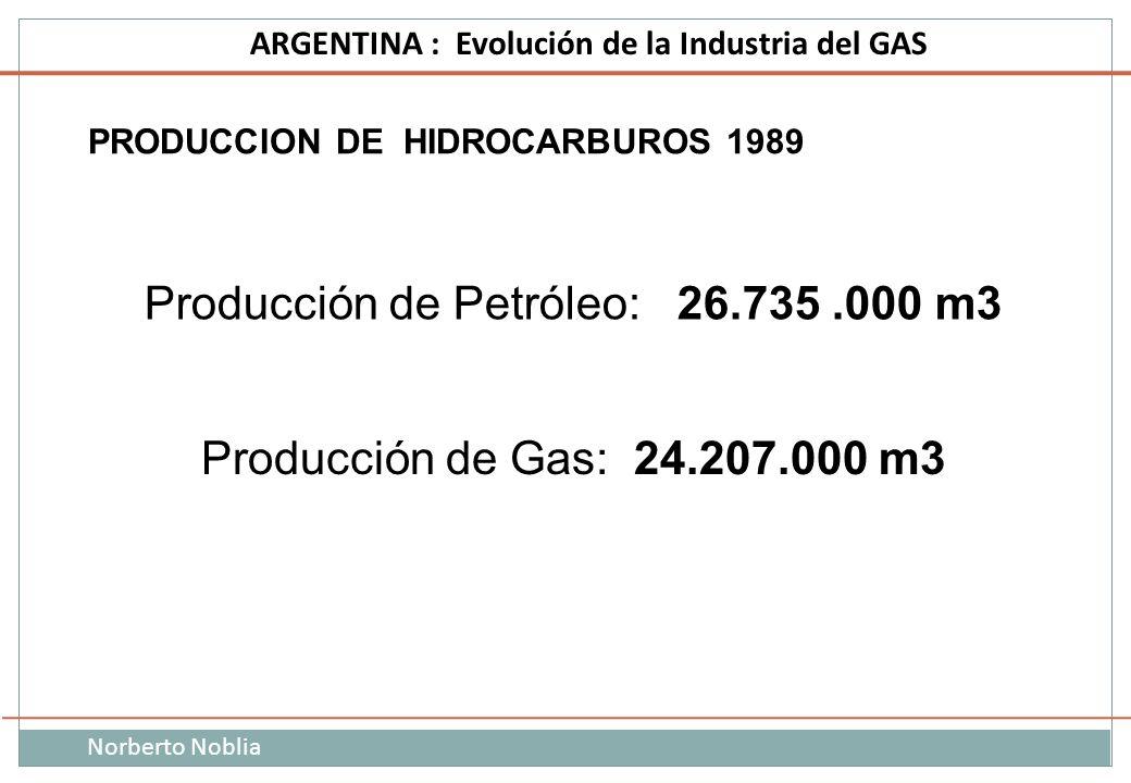 PRODUCCION DE HIDROCARBUROS 1989
