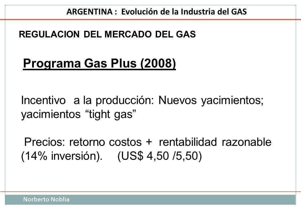 Incentivo a la producción: Nuevos yacimientos; yacimientos tight gas