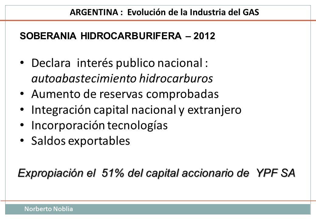Declara interés publico nacional : autoabastecimiento hidrocarburos